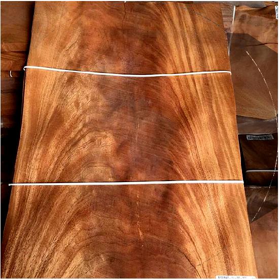 Veneer tự nhiên Nu gỗ - VN 15