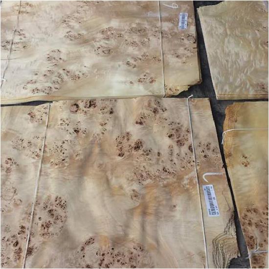 Veneer tự nhiên Nu gỗ - VN 12